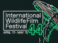 International Wildlife Film Festival