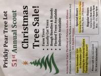 Boy Scout Christmas Tree Sale