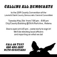 County Convention of the L&C Co. Democrats