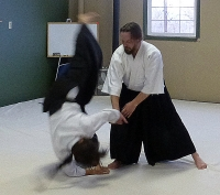 Helena Aikido Beginners Special