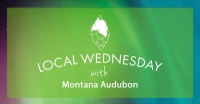 Local Wednesday with Montana Audubon