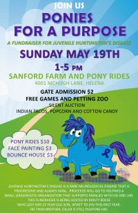 Ponies For A Purpose Fundraiser