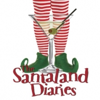 The Santaland Diaries at Grandstreet Theatre