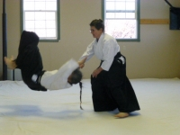 Intro Courses in Helena Aikido