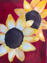 Canvas Paint N Party Shop Adult Paint N Sip Sunflowers