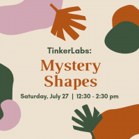 TinkerLabs: Mystery Shapes