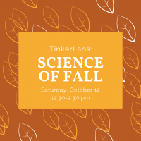 TinkerLabs: Science of Fall