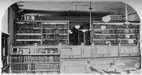 Malden Public Library 140th Anniversary Celebration