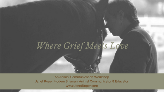 Pets: Where Grief Meets Love 03/22/2018 Missoula, Montana