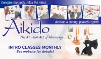 Aikido Fundamentals for Adults