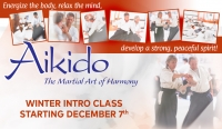 Winter Aikido Intro for Beginning Adults