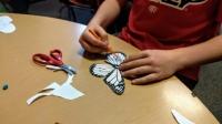 Experience MIS! Preschool Open House