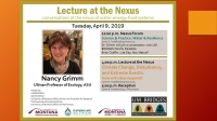 Lecture at the Nexus by Nancy Grimm