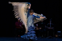 Fall Flamenco for New Beginners!