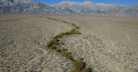 Manzanar, Diverted: When Water Becomes Dust