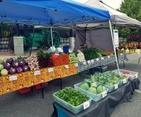 Missoula Farmers' Market-Tuesday Evening Market