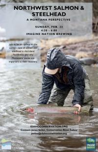 Northwest Salmon & Steelhead, a Montana Perspective