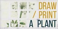 Plant drawing/printing workshop
