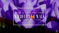 Wildflower Walk at Milltown State Park