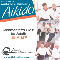 Summer Aikido Intro for Beginning Adults