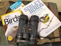 Advanced Birding Workshop - cancelled