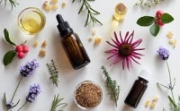 Emotions: Support you with herbs & essential oils!