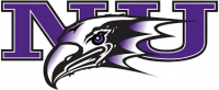 Women's Basketball Niagara University Purple Eagles
