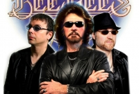 Night Fever (Bee Gees)