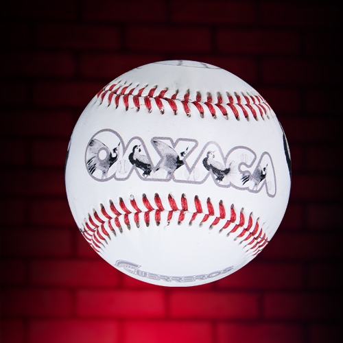 Guerreros Baseball/Beisbol