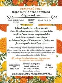 Cempasúchil (Mexican Marigold) Origen y Aplicaciones