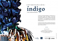 Indigo / Intervencion: Indigo