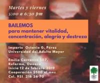 We Dance / Bailemos