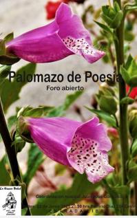 Poetry & Open Mike Night / Palomazo de Poesia