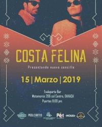 Feline Coast / Costa Felina