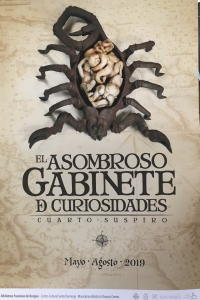 The Amazing Cabinet of Curiosities/Asombroso gabinete de curiosidades