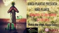 Niño Planta Circus Performance