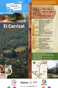 El Carrizal: Feria del trigo (Wheat Fair), Villa de Diaz Ordaz
