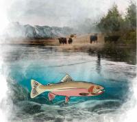 Wildlife Speaker Series - Trout