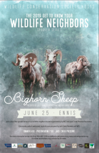 Summer Wildlife Speaker Series: Big Horn Sheep