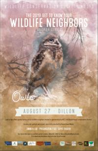 Summer Wildlife Speaker Series: Owls
