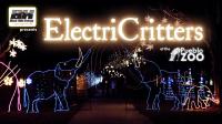 ElectriCritters at the Pueblo Zoo