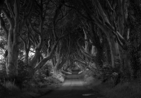 Winners Take Black & White Photography To Next Level
