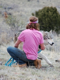 Mission Wolf: Experiment in Living Film Screening