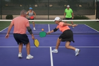 FREE PICKLEBALL PARTY