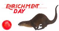 Enrichment Day at the Pueblo Zoo