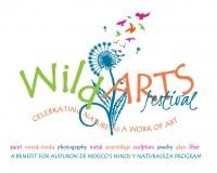Audubon de Mexico's Wild Arts Festival