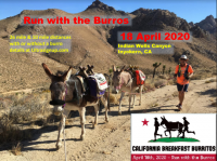 Run with the Burros