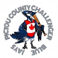 Pictou County Challenger Baseball Registration
